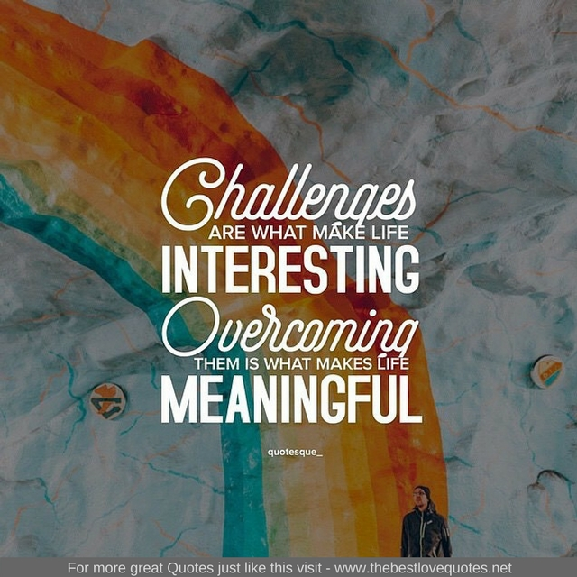 what makes a meaningful life 99 quotes have been tagged as meaningful-life: roy t bennett: 'learn to light a candle in the darkest moments of someone's life be the light that helps.